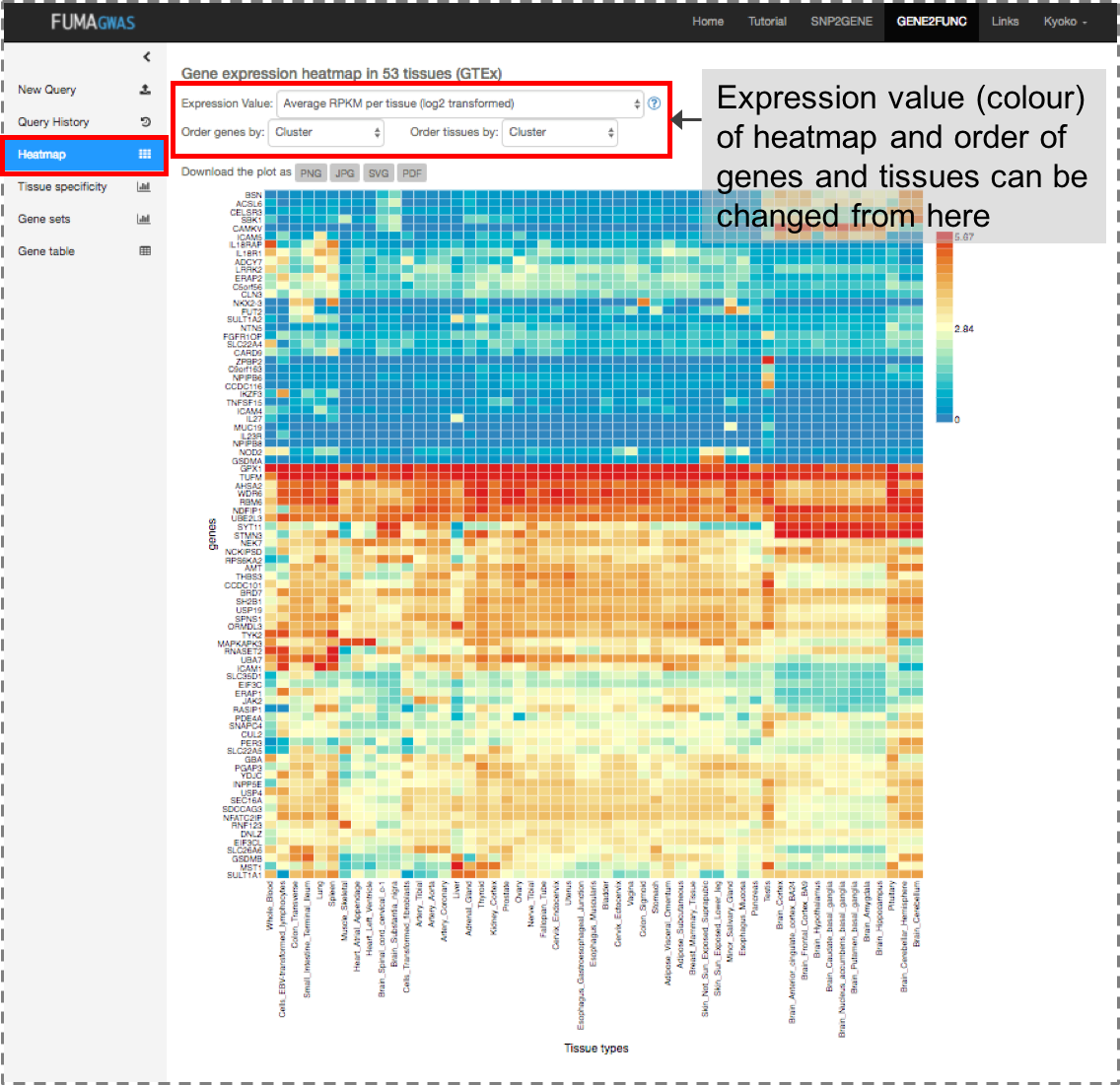 Functional Mapping and Annotation of Genome-wide association